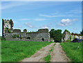 R4354 : Castles of Munster: Shanpallas, Limerick (1) by Garry Dickinson