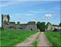 R4354 : Castles of Munster: Shanpallas, Limerick (1) by Garry Dickinson