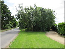 SU0596 : Station Road near South Cerney by Malc McDonald