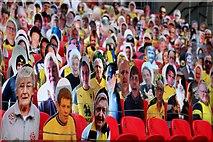 TQ1985 : Cardboard fans in Wembley Stadium by Steve Daniels