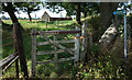 SU2688 : Ancient Gate on the Bridleway by Des Blenkinsopp