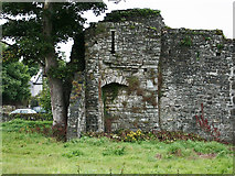 N8056 : Castles of Leinster: Trim, Nangle's Castle, Meath (1) by Garry Dickinson
