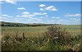 SU2682 : Downland Farm Scenery by Des Blenkinsopp