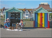 TQ2704 : Hove : beach hut couple with dogs by Julian Osley