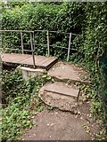 TQ5571 : Darent Valley Path - steps leading to footbridge (east side of river) by Paul Williams