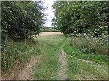 TQ5571 : Footpath into field by Paul Williams