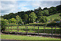 NY8645 : Railings around 'Horse Track' by Trevor Littlewood