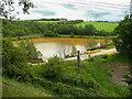 SE2002 : Brown pond, Bullhouse, Millhouse Green by Humphrey Bolton
