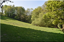 TQ5938 : Forest Rd Recreation Ground by N Chadwick