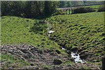 TQ5936 : Small stream near Brickhouse Farm by N Chadwick