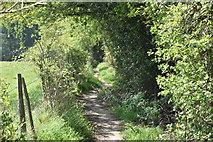 TQ5936 : High Weald Landscape Trail by N Chadwick