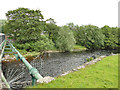 SD8163 : River Ribble downstream of Penny Bridge by Stephen Craven