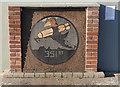 TM1881 : 351st squadron emblem plaque by Adrian S Pye