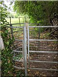 TQ5571 : Footpath DR37 by Paul Williams