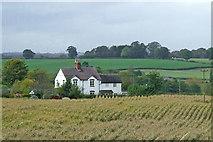 SJ6541 : Cheshire farmland near Coxbank by Roger  Kidd