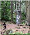 NJ8511 : On the sculpture trail, Tyrebagger Forest by Bill Harrison
