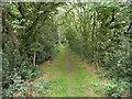 SE2200 : Path on the Langsett Reservoir railway track by Humphrey Bolton