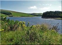 SJ9775 : Lamaload Reservoir by Neil Theasby
