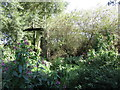 SO6028 : Himalayan Balsam and a glimpse of Foy Bridge by Jonathan Thacker