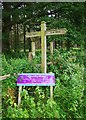 SO6976 : Fingerpost at an entrance to the Wyre Forest, Cleobury Mortimer Golf Club, Shrops by P L Chadwick