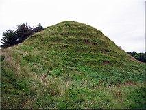 N7781 : Kilbeg Upper Motte & Bailey, Meath (2) by Garry Dickinson
