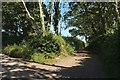 SX7859 : Jackman's Lane by Derek Harper