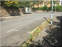 NT2572 : Weedy gutter, Palmerston Road by Richard Webb