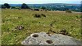 NZ8202 : Prehistoric rock art by Mick Garratt