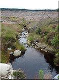 NJ0946 : Stripe of Grevach by Anne Burgess