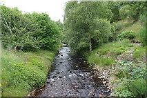 NJ1348 : River Lossie by Anne Burgess