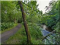 NH5129 : Path by the River Enrick by valenta