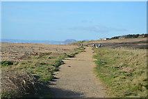 SY5088 : South West Coast Path, Cogden Beach by N Chadwick