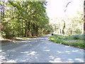 TG1417 : Reepham Road, Attlebridge by Adrian Cable