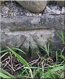 SE3774 : Benchmark on Sunny Bank Wall, Rainton by Matthew Hatton