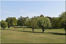 TQ5937 : Nevill Golf Club by N Chadwick