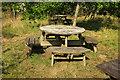 SX8078 : Picnic tables, Parke by Derek Harper