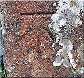 SE1767 : Benchmark on High Bishopside Moor gatepost by Matthew Hatton