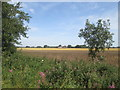 TA0652 : Over  fields  to  Corpslanding  from  Rotsea  Lane by Martin Dawes