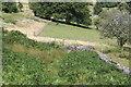 SO2904 : Footpath down from Lasgarn Lane by M J Roscoe