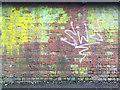 SP2865 : Lichen, moss and graffito on brickwork, Coventry Road railway bridge, Warwick by Robin Stott