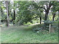 SP3726 : Public footpath near Chipping Norton by Malc McDonald