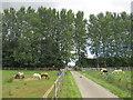 SP3727 : Path through Heythrop Park, near Chipping Norton by Malc McDonald