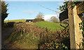 ST7166 : Cotswold Way on Dean Hill by Derek Harper