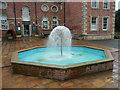 NZ5921 : Fountain outside the museum, Kirkleatham by Humphrey Bolton