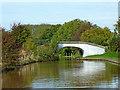 SJ6255 : Hurleston Roving Bridge near Barbridge in Cheshire by Roger  Kidd