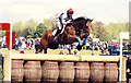 ST8083 : Badminton Horse Trials, Gloucestershire 2002 by Ray Bird