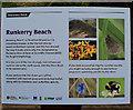 C9342 : Information panel, Runkerry Beach by Kenneth  Allen