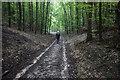 SE8556 : Chalkland Way at Greenwick Dale by Ian S