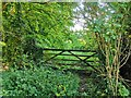 TQ5200 : Gated Entrance to Friton Forest, Westdean by PAUL FARMER