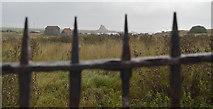 NU1341 : Lindisfarne Castle seen from Lindisfarne Priory by habiloid
